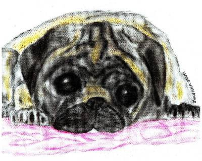 Daisys Red Blanket Art Print by Shaunna Juuti