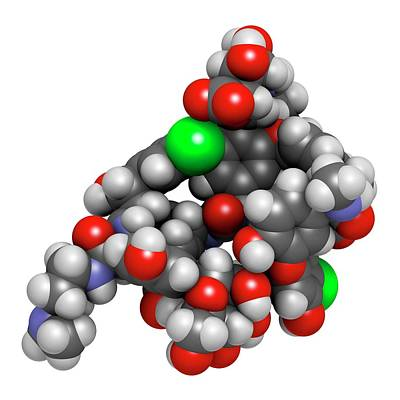 Dalbavancin Glycopeptide Antibiotic Drug Art Print by Molekuul