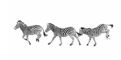 Contemporary Wildlife Painting - Dancing Zebras by Ramona Murdock
