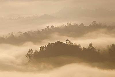 Danum Valley Conservation Area Photograph - Danum Valley Rainforest At Sunrise Sabah by Sebastian Kennerknecht