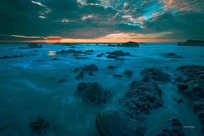 Photograph - Dark Rock Garden...... Cambria by Tim Bryan