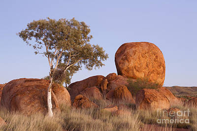Comic Character Paintings - Dawn Devils Marbles Northern Territory by Colin and Linda McKie