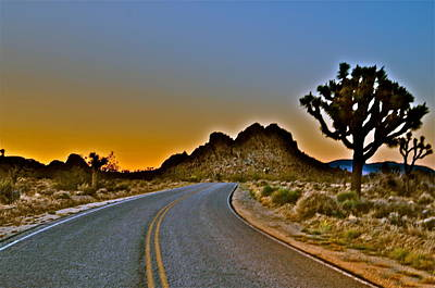 Photograph - Dawn In The Desert by Joe  Burns