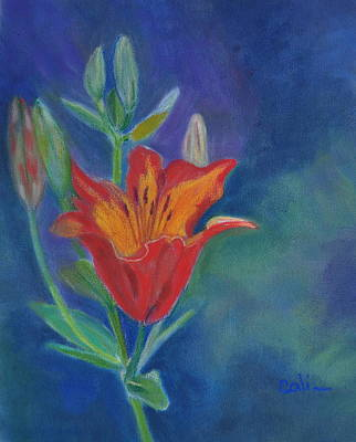 Pastel - Day Lily by Calliope Thomas