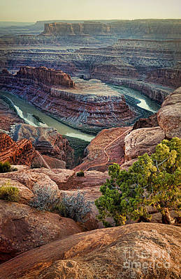 Photograph - Dead Horse Point by Jill Battaglia