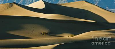 Death Valley 11 Original by Micah May