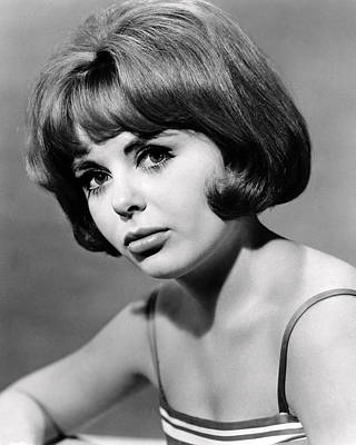 Deborah Walley Art Print