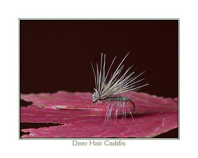 Deer Hair Caddis Art Print by Neal Blizzard