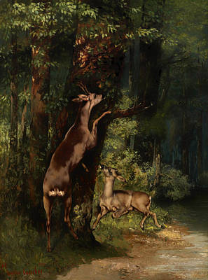 Wildlife Landscape Painting - Deer In The Forest by Mountain Dreams