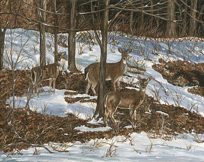 Painting - Deer In Winter by Lucinda V VanVleck