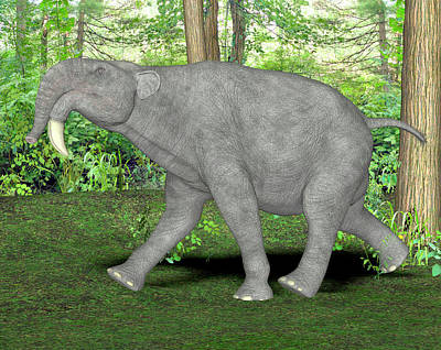 Deinotherium Prehistoric Mammal Art Print by Friedrich Saurer