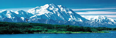 Ak Photograph - Denali National Park Ak Usa by Panoramic Images