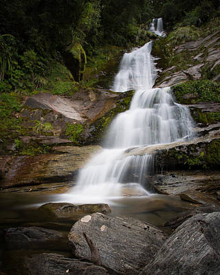 Photograph - Depot Creek Falls by Brad Grove
