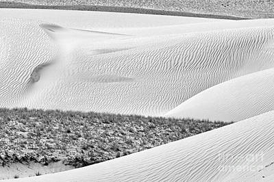 Photograph - Desert Abstract by Hitendra SINKAR