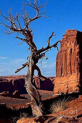 Desert Formations Art Print