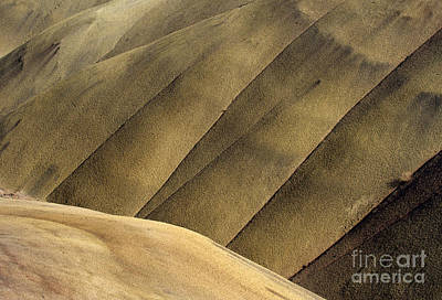 Contour Photograph - Desert Lines by Mike  Dawson