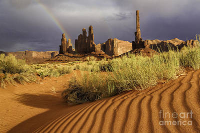 Photograph - Desert Rainbow by Stuart Gordon