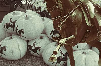 Photograph - Devon Pumpkins by JAMART Photography