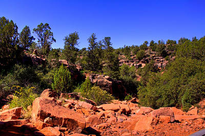Photograph - Diamondback Gulch In Sedona Arizona by David Patterson