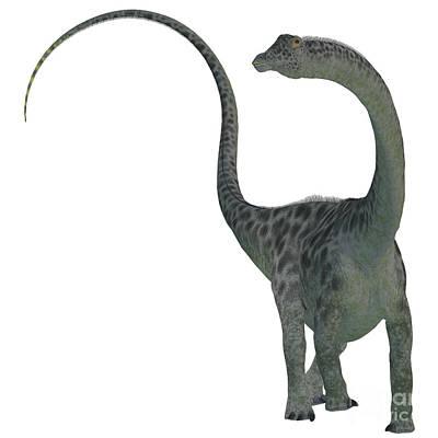 Diplodocus Dinosaur Art Print by Corey Ford