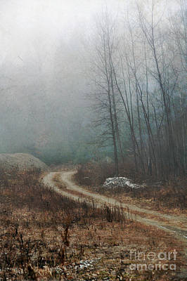 Winter Trees Photograph - Dirt Road by HD Connelly