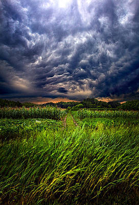 Winter Storm Photograph - Disturbance by Phil Koch