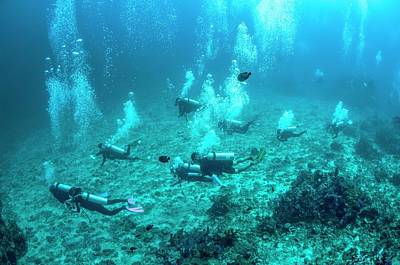 Divers Over A Coral Reef Art Print