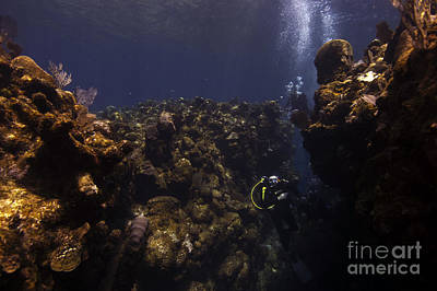 Photograph - Divers Reef by JT Lewis