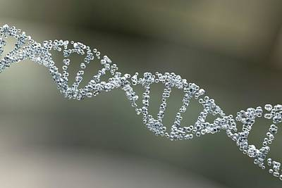 3d Artwork Photograph - Dna Molecule by Kateryna Kon
