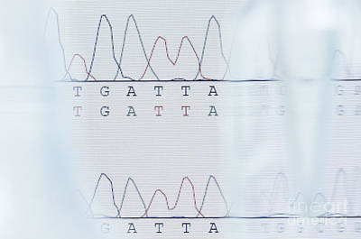 Heredity Photograph - Dna Sequencing by GIPhotoStock