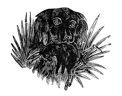 Carcass Painting - Dog, 19th Century by Granger