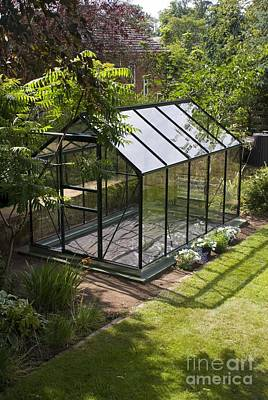 Domestic Greenhouse In Garden Art Print by Mark Williamson
