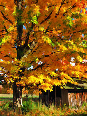 Painting - Door County Yellow Maple Migrant Shack by Christopher Arndt