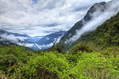Photograph - Doubtful Sound by Alexey Stiop