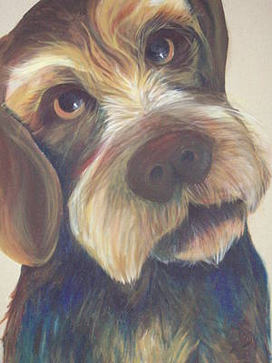 Dog Close-up Painting - Drahthaar Amadeus by Catt Kyriacou