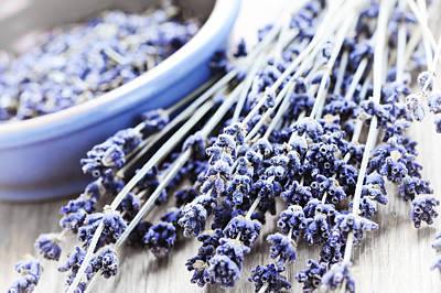 Kitchen Collection - Dried lavender by Elena Elisseeva