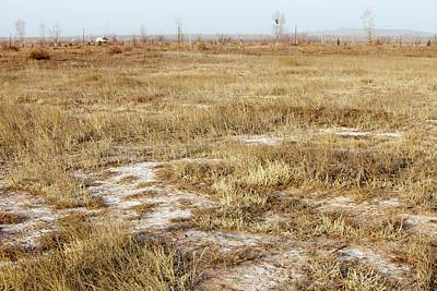 Dried Up Lake Bed From Drought Art Print by Ashley Cooper