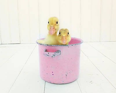 Ducklings Photograph - Duck Soup  by Amy Tyler