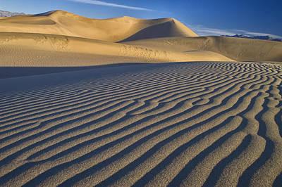 Photograph - Dune Walker by Jim Dollar
