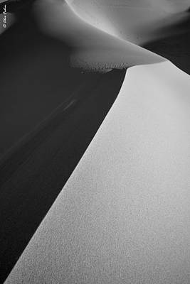 Dunes Art Print