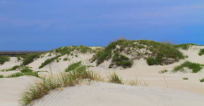 Sandy Photograph - Dunes And Grasses 11 by Cathy Lindsey