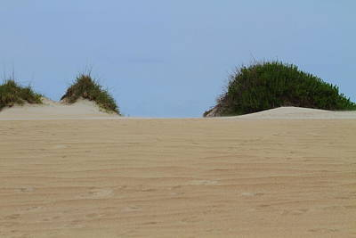 Dunes Photograph - Dunes And Grasses 9 by Cathy Lindsey