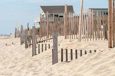 Photograph - Dunes Fencing Along Outer Banks Of North Carolina In Cape Hatter by Alex Grichenko