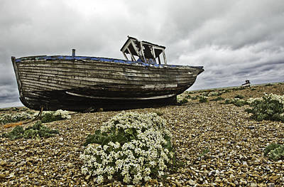 Dungeness Art Print by Lesley Rigg