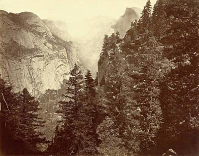 Yosemite National Park Drawing - Eadweard Muybridge American, Born England by Quint Lox