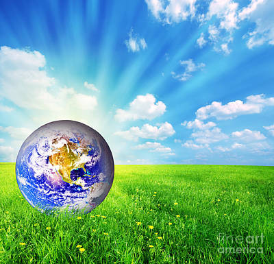 Terra Photograph - Earth Globe On Green Grass by Michal Bednarek