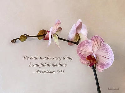 Photograph - Ecclesiastes 3 11 He Hath Made Everything Beautiful by Susan Savad
