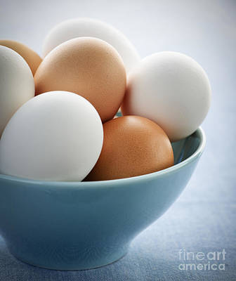 Eggshell Photograph - Eggs In Bowl by Elena Elisseeva