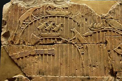 Carved Bird Photograph - Egyptian Stone Tablet. by Mark Williamson