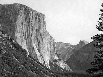 El Capitan Art Print by Thomas Leon